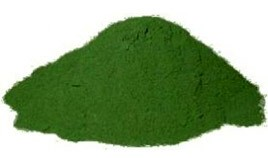 Wheatgrass-POWDER3